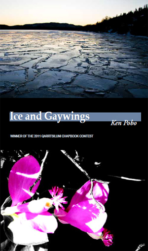 cover of Ice and Gaywings